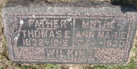 WILKINS, THOMAS - Clayton County, Iowa | THOMAS WILKINS