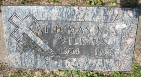 WILKINS, THOMAS RAY - Clayton County, Iowa | THOMAS RAY WILKINS