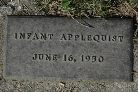 APPLEQUIST, INFANT - Clinton County, Iowa | INFANT APPLEQUIST