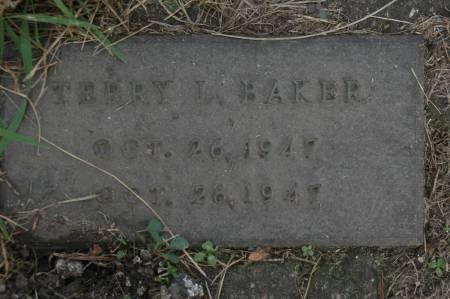 BAKER, TERRY L. - Clinton County, Iowa   TERRY L. BAKER