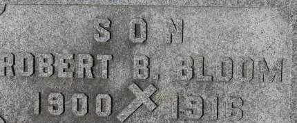 BLOOM, ROBERT B. - Clinton County, Iowa | ROBERT B. BLOOM