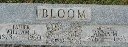 BLOOM, WILLIAM J. - Clinton County, Iowa   WILLIAM J. BLOOM