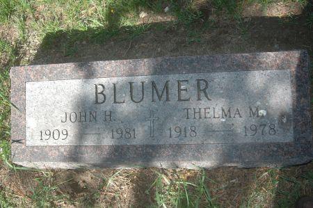 BLUMER, THELMA M. - Clinton County, Iowa | THELMA M. BLUMER