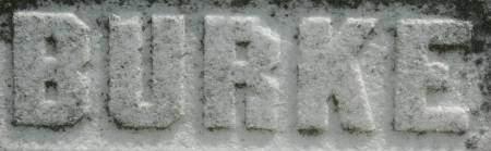 BURKE, FAMILY MONUMENT - Clinton County, Iowa   FAMILY MONUMENT BURKE