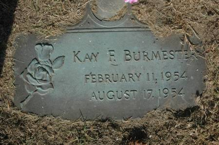 BURMESTER, KAY F. - Clinton County, Iowa | KAY F. BURMESTER