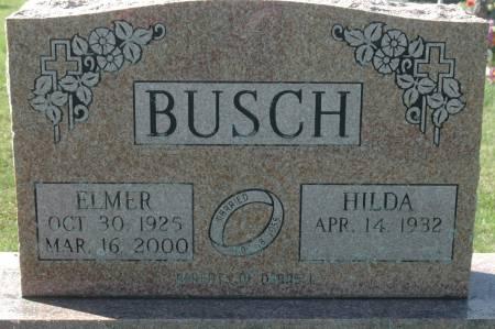 BUSCH, ELMER - Clinton County, Iowa   ELMER BUSCH