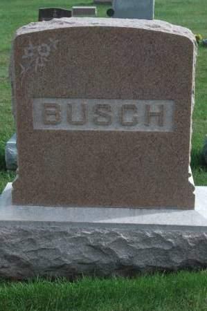 BUSCH, FAMILY MONUMENT - Clinton County, Iowa   FAMILY MONUMENT BUSCH