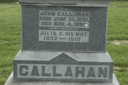CALLAHAN, JULIA C. - Clinton County, Iowa | JULIA C. CALLAHAN