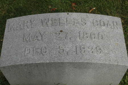WELLS COAN, MARY ALICE - Clinton County, Iowa | MARY ALICE WELLS COAN