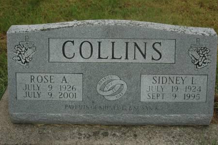 COLLINS, SIDNEY L. - Clinton County, Iowa   SIDNEY L. COLLINS