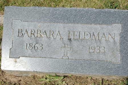 FELDMAN, BARBARA - Clinton County, Iowa   BARBARA FELDMAN