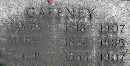 GAFFNEY, PETER - Clinton County, Iowa | PETER GAFFNEY