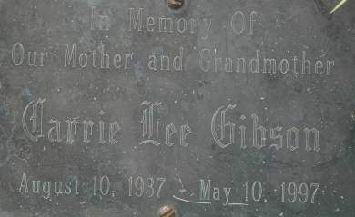 GIBSON, CARRIE LEE - Clinton County, Iowa   CARRIE LEE GIBSON