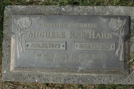 HAHN, MICHELLE RAE - Clinton County, Iowa   MICHELLE RAE HAHN
