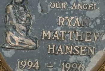 HANSEN, RYAN MATTHEW - Clinton County, Iowa | RYAN MATTHEW HANSEN