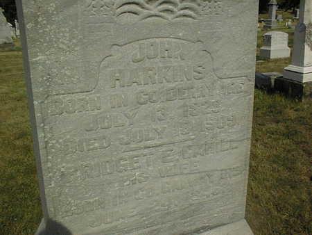 HARKINS, BRIDGET - Clinton County, Iowa | BRIDGET HARKINS