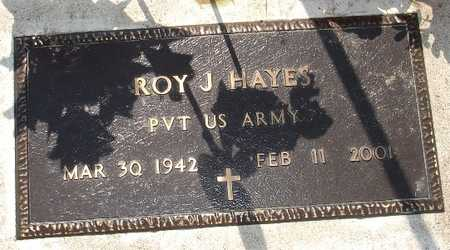 HAYES, ROY J. - Clinton County, Iowa | ROY J. HAYES