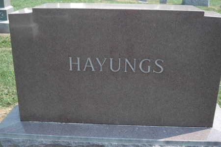 HAYUNGS, FAMILY MONUMENT - Clinton County, Iowa | FAMILY MONUMENT HAYUNGS