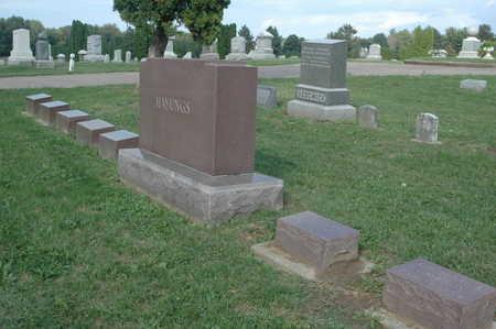 HAYUNGS, FAMILY MONUMENTS - Clinton County, Iowa | FAMILY MONUMENTS HAYUNGS