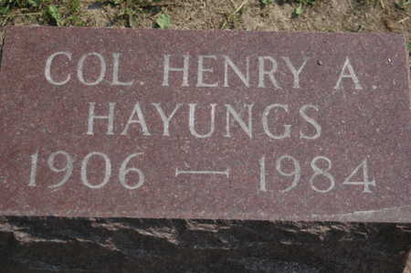 HAYUNGS, HENRY A. - Clinton County, Iowa | HENRY A. HAYUNGS