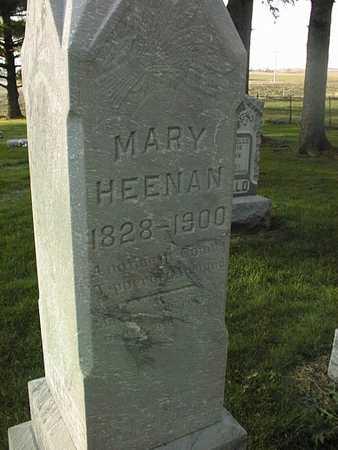 HEENAN, MARY - Clinton County, Iowa   MARY HEENAN