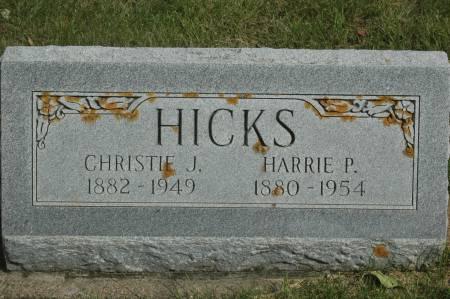 HICKS, CHRISTIE J. - Clinton County, Iowa | CHRISTIE J. HICKS