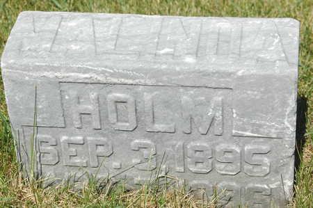 HOLM, MALINDA - Clinton County, Iowa   MALINDA HOLM