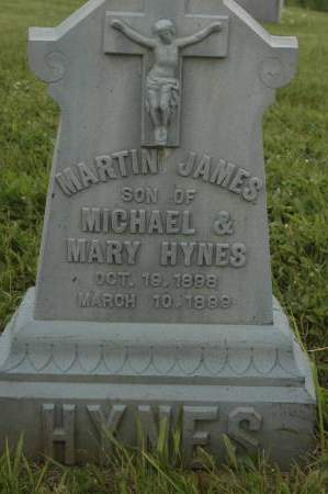 HYNES, MARTIN JAMES - Clinton County, Iowa | MARTIN JAMES HYNES