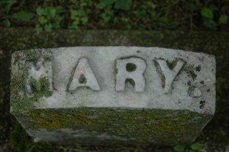 IRELAND, MARY - Clinton County, Iowa | MARY IRELAND