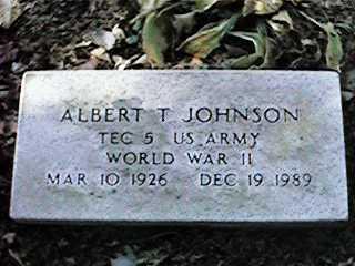 JOHNSON, ALBERT T - Clinton County, Iowa | ALBERT T JOHNSON