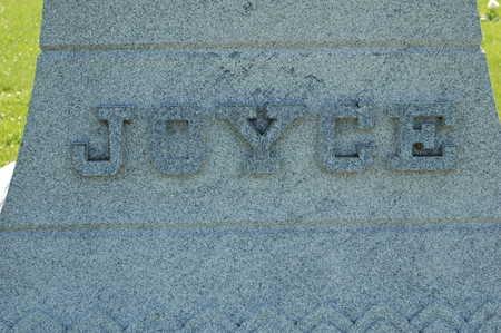 JOYCE, MONUMENT - Clinton County, Iowa | MONUMENT JOYCE