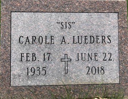 LUEDERS, CAROLE A. - Clinton County, Iowa | CAROLE A. LUEDERS