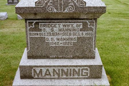 MANNING, BRIDGET - Clinton County, Iowa | BRIDGET MANNING