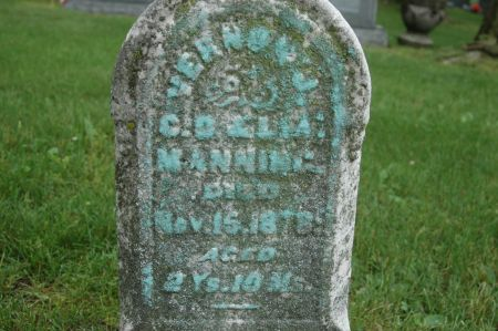 MANNING, VERNON J. - Clinton County, Iowa   VERNON J. MANNING