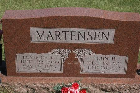 MARTENSEN, JOHN H. - Clinton County, Iowa | JOHN H. MARTENSEN