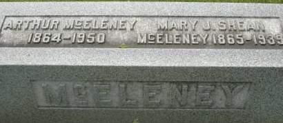 SHEAN MCELENEY, MARY J. - Clinton County, Iowa   MARY J. SHEAN MCELENEY