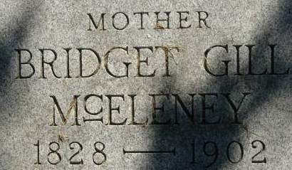GILL MCELENEY, BRIDGET - Clinton County, Iowa | BRIDGET GILL MCELENEY