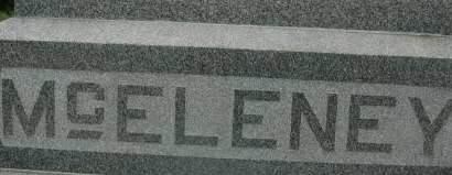MCELENEY, FAMILY MONUMENT - Clinton County, Iowa   FAMILY MONUMENT MCELENEY