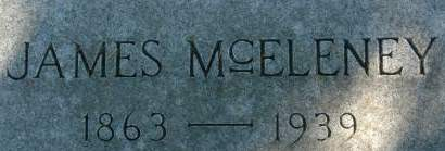 MCELENEY, JAMES 1863-1939 - Clinton County, Iowa | JAMES 1863-1939 MCELENEY