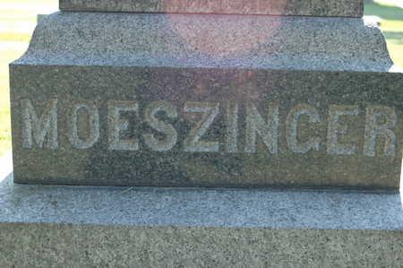 MOESZINGER, MONUMENT - Clinton County, Iowa | MONUMENT MOESZINGER