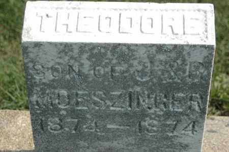 MOESZINGER, THEODORE - Clinton County, Iowa | THEODORE MOESZINGER
