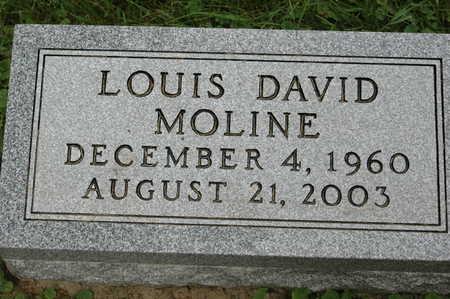 MOLINE, LOUIS DAVID - Clinton County, Iowa | LOUIS DAVID MOLINE