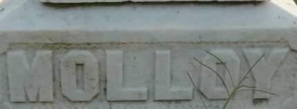MOLLOY, FAMILY MONUMENT - Clinton County, Iowa | FAMILY MONUMENT MOLLOY