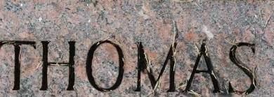 MORRISSEY, THOMAS - Clinton County, Iowa | THOMAS MORRISSEY