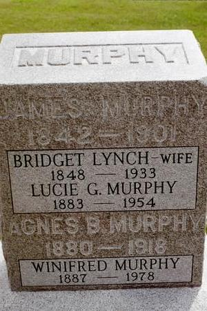 LYNCH MURPHY, BRIDGET AGNES - Clinton County, Iowa | BRIDGET AGNES LYNCH MURPHY