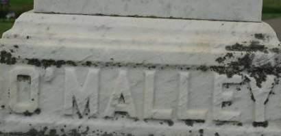 O'MALLEY, FAMILY MONUMENT - Clinton County, Iowa | FAMILY MONUMENT O'MALLEY