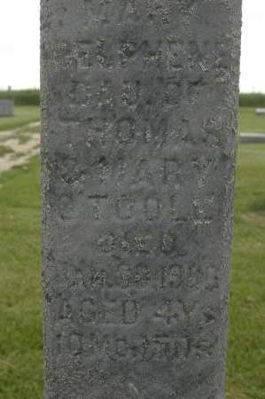 O'TOOLE, MARY DELPHENE - Clinton County, Iowa | MARY DELPHENE O'TOOLE