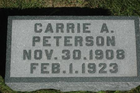 PETERSON, CARRIE A. - Clinton County, Iowa | CARRIE A. PETERSON
