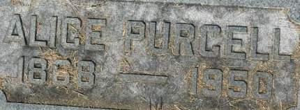PURCELL, ALICE - Clinton County, Iowa | ALICE PURCELL