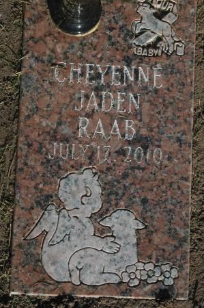 RAAB, CHEYENNE JADEN - Clinton County, Iowa | CHEYENNE JADEN RAAB